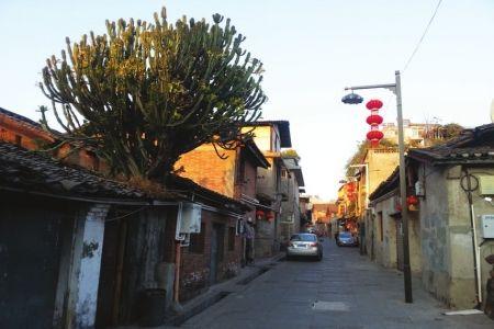 建昌古城中的街巷,格局依旧。