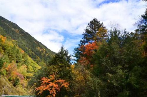 四川省阿坝州理县秋季风光。