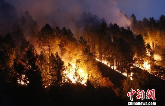 雅江森林火灾现场。 曾鹏 摄
