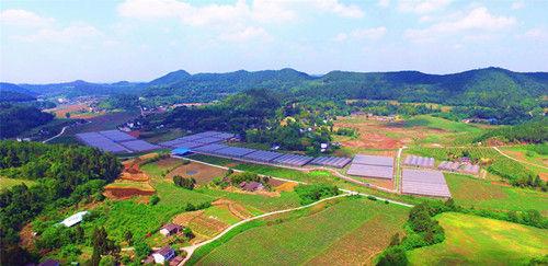农业供给侧结构性改革后的良好生态。李同周摄