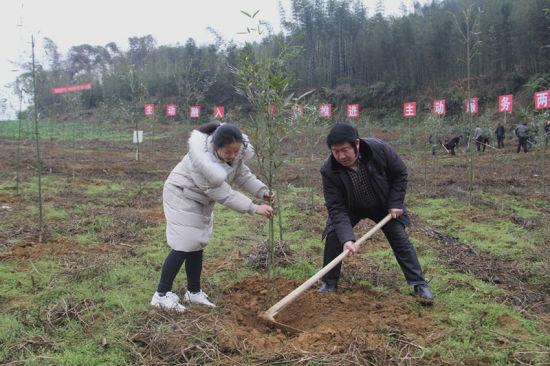 http://www.chnbk.com/wenhuayichan/1366.html