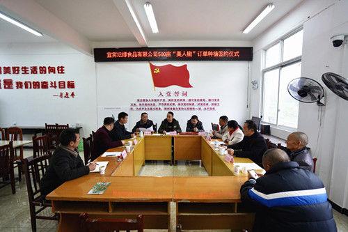 """""""订单""""签订了村民收入有了保障。江安县委宣传部供图。"""