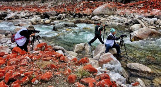 摄影家们拍摄中。(澳门博彩十大网站排行省文化和旅游厅 供图)