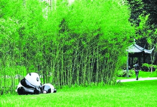 三环路熊猫绿道1号竹林清韵
