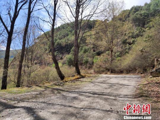 图为已经废弃的川藏公路二郎山路段碎石路。 王鹏 摄