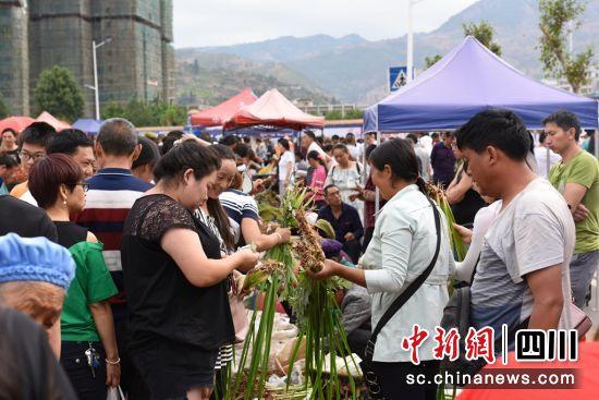 艾草文化节现场。钟欣摄