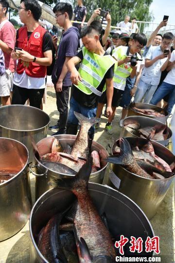 志愿者用桶运走刚捕捞上岸的鱼。 张浪 摄
