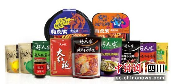 天味系列品牌调味品