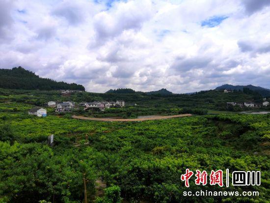 http://www.ncchanghong.com/qichexiaofei/12001.html