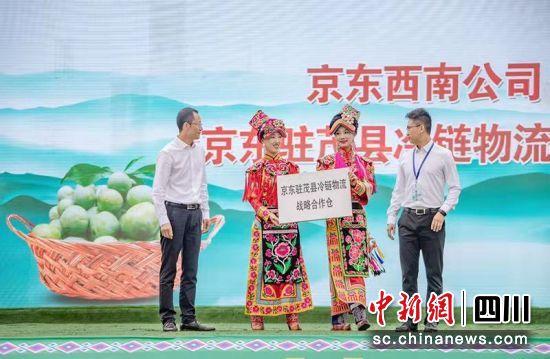第二届茂县李文化旅游节开幕