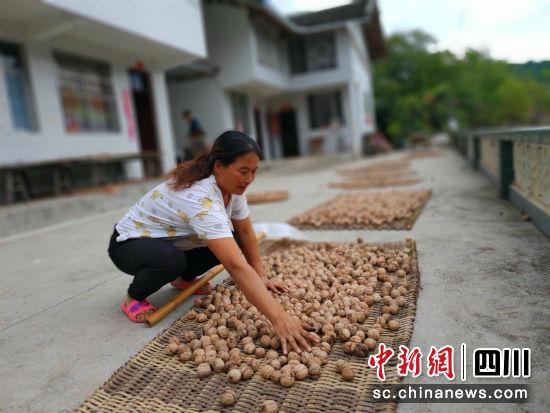 http://www.fanchuhou.com/shehui/889831.html