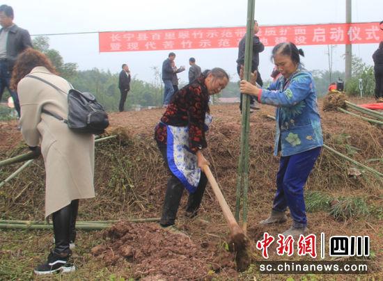 http://www.chnbk.com/shishangchaoliu/9529.html