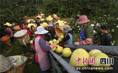 http://www.msbmw.net/tiyuhuodong/18616.html