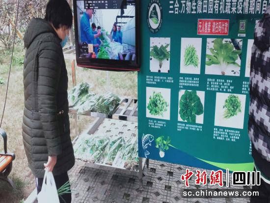小区居民在选购蔬菜。范旭东 摄