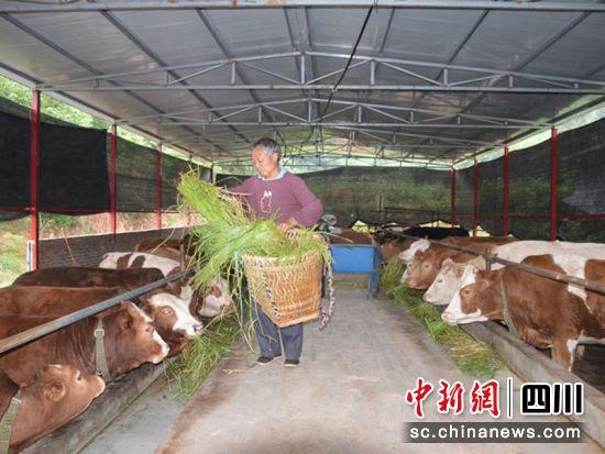 http://www.ncchanghong.com/nanchongjingji/24257.html