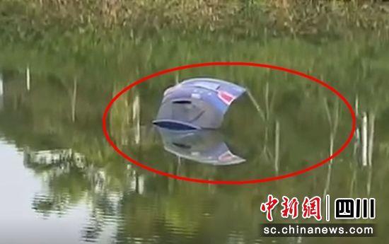 ��v��入湖中(王友 供�D)