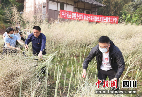 安岳县gdp_安岳县商务和经济合作局关于理性购物、分散购物的倡议书