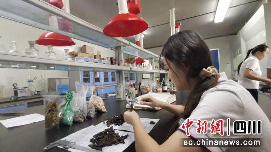 工作人员正在检测药品。威远县委宣传部供图