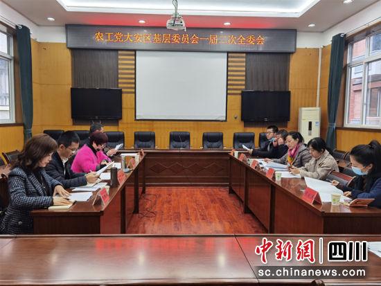 农工党大安区基层委员会一届二次全委会现场。 陈朝霞 摄