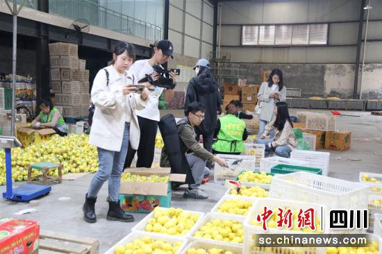 参观柠檬生产。 朱国强 摄
