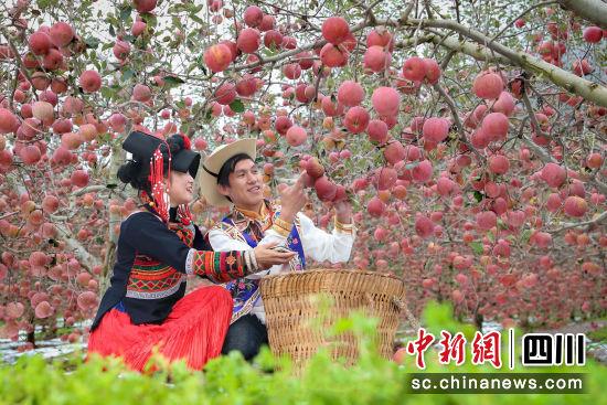 盐源县将举办第四届苹果节。周光旭 摄