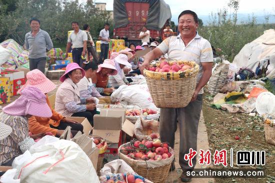 果农脸上洋溢着丰收的喜悦。周光旭 摄